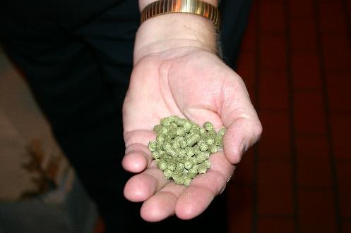 Hops used at Genesee comes in the form of pellets from Washington State.